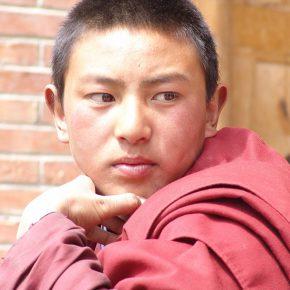 『ラサへの歩き方〜祈りの2400km』公開記念 チベット映画傑作選